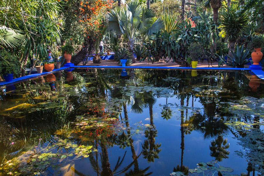 Teich im Jardin Majorelle