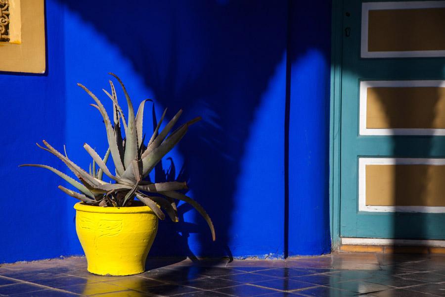 gelbe Vase im Jardin Majorelle