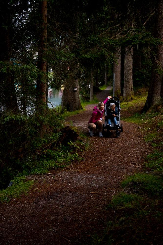 Im Wald in Zauchensee